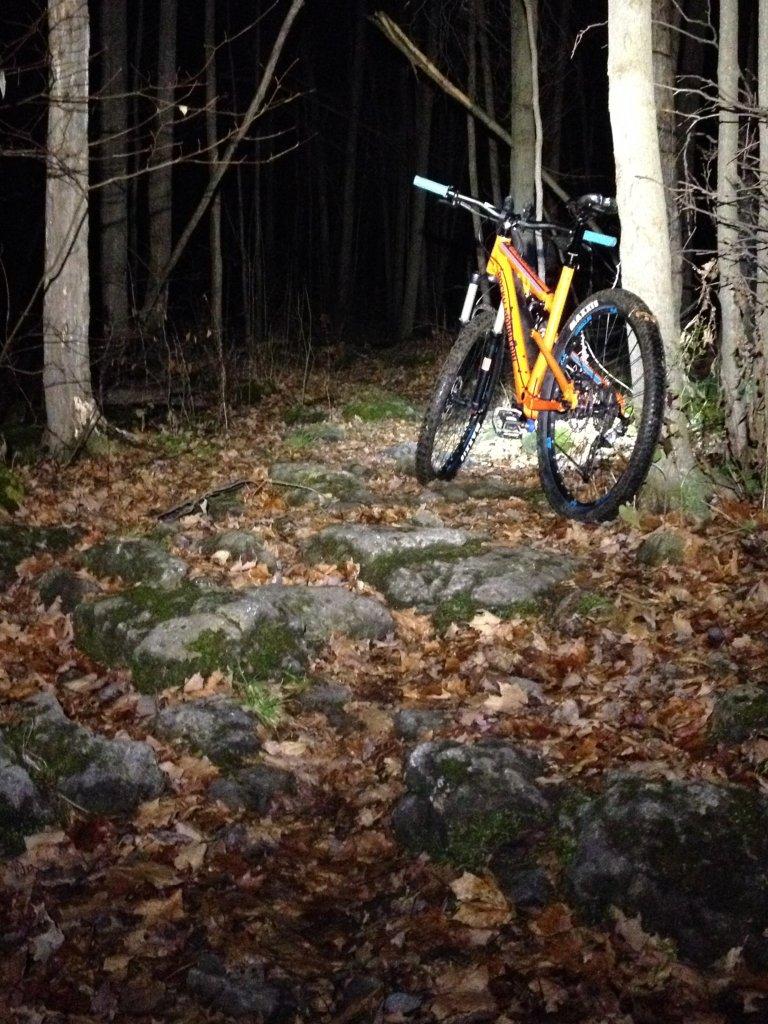Local Trail Rides-img_0608.jpg