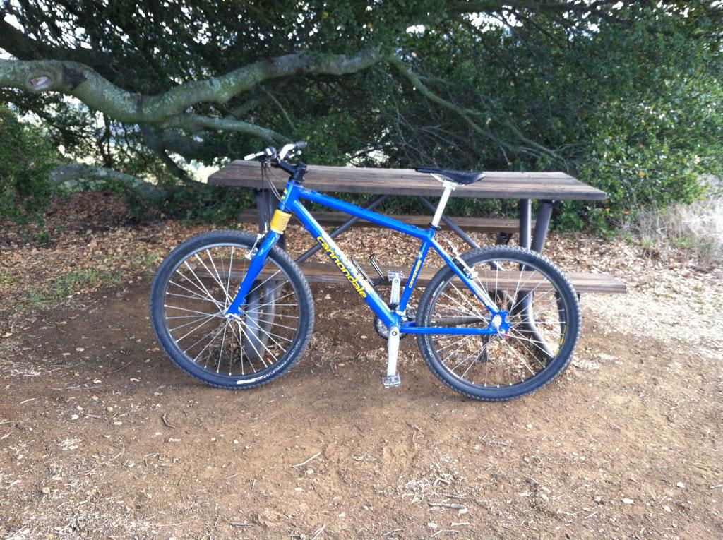 Older bikes-img_0621_2.jpg