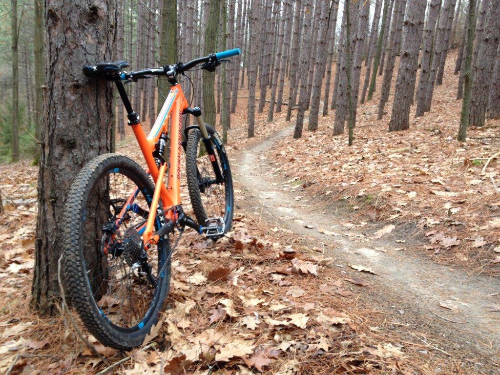 Local Trail Rides-img_0653.jpg