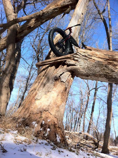 Daily fatbike pic thread-img_0654.jpg