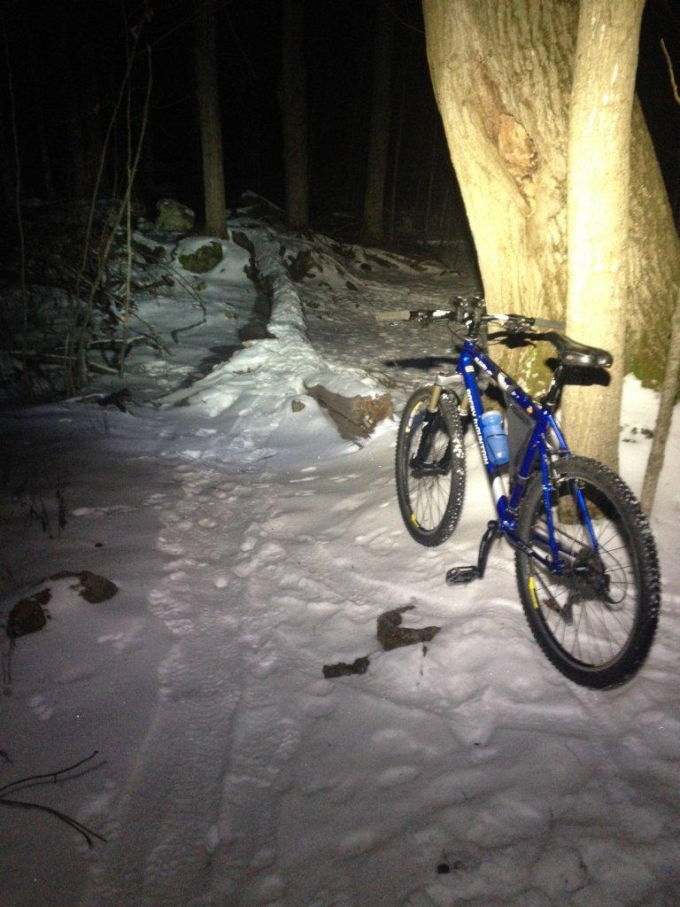 Local Trail Rides-img_0670.jpg