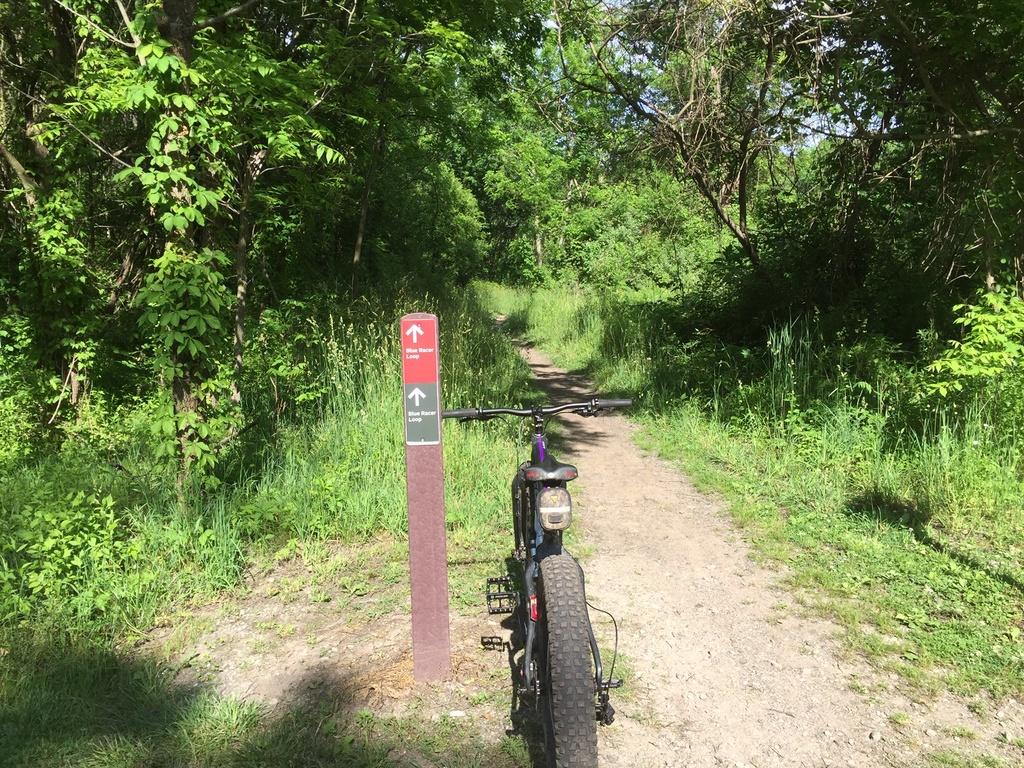 Fat Biking and health-img_0672.jpg