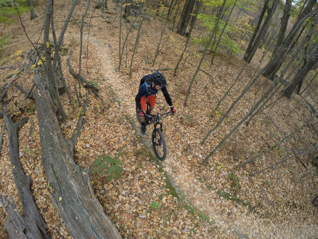 Show off your Devinci's!-img_0693a.jpg
