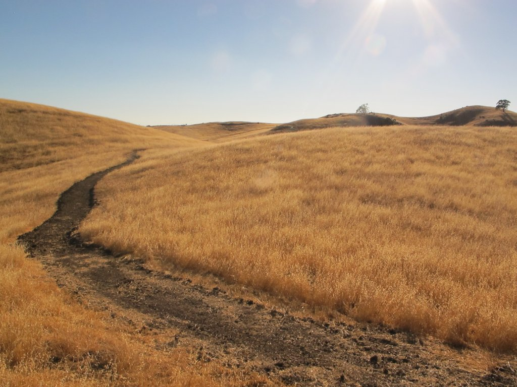 Aquila Loop Trail-img_0706.jpg