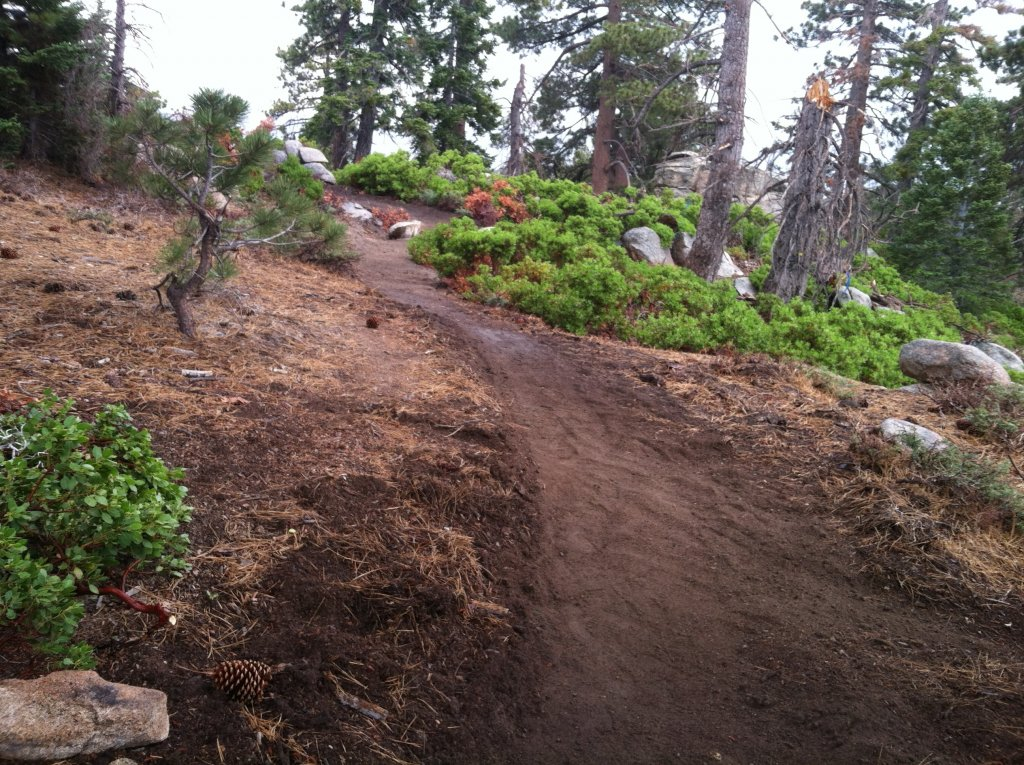 Big Bear old trails(outside Snow Summit property), are they still open to ride?-img_0731.jpg