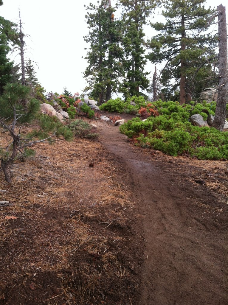 Big Bear old trails(outside Snow Summit property), are they still open to ride?-img_0732.jpg