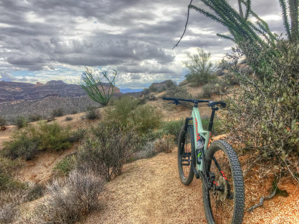 did you ride today?-img_0733_4_b.jpg
