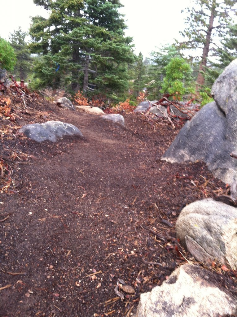 Big Bear old trails(outside Snow Summit property), are they still open to ride?-img_0734.jpg