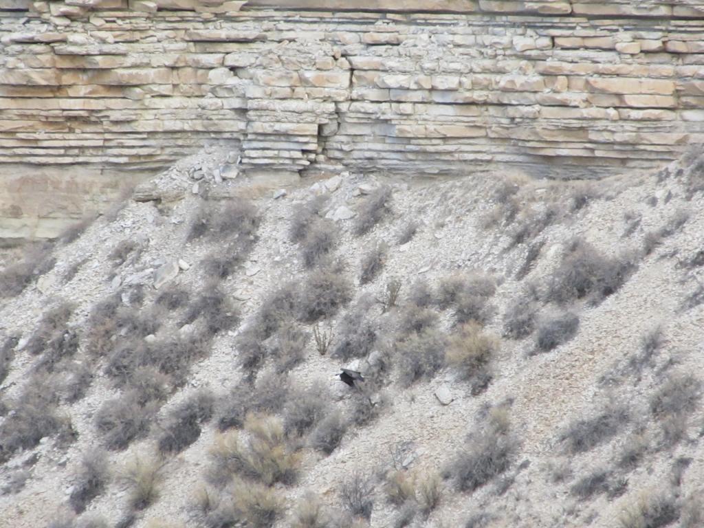 Sucky Pueblo-img_0737.jpg