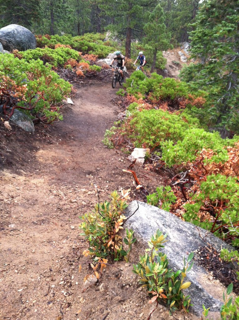 Big Bear old trails(outside Snow Summit property), are they still open to ride?-img_0737.jpg