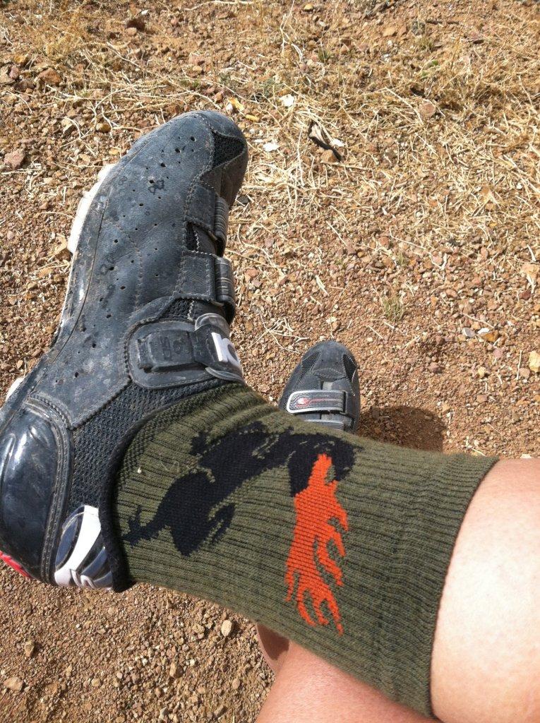 Fashion Question: Socks...-img_0739.jpg