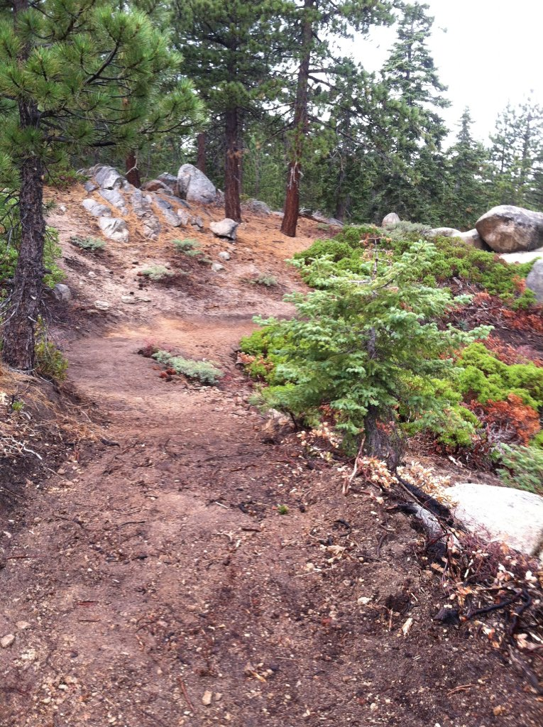 Big Bear old trails(outside Snow Summit property), are they still open to ride?-img_0739.jpg