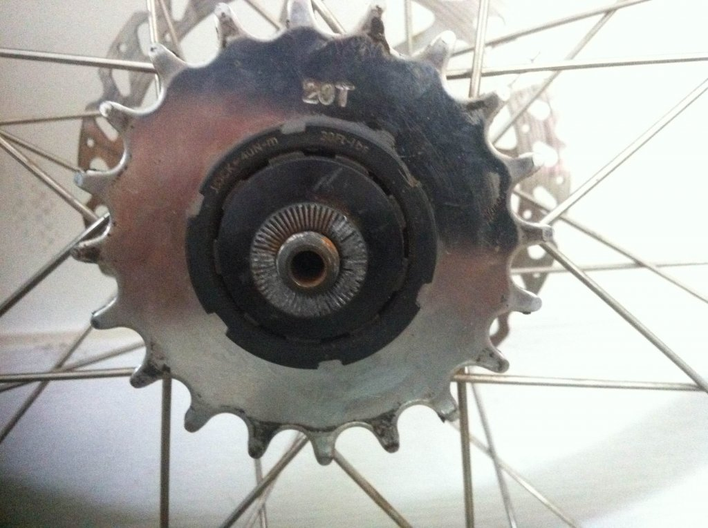 Which freewheel/lockring tool to remove this rear cog?-img_0752.jpg