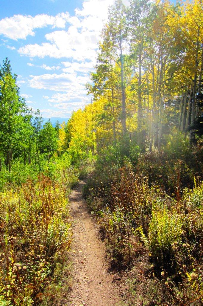 Fall is here!-img_0759.jpg