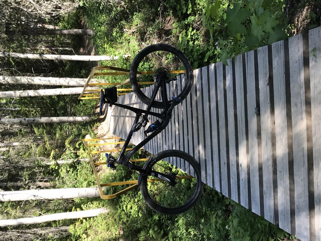 bike +  bridge pics-img_0770.jpg