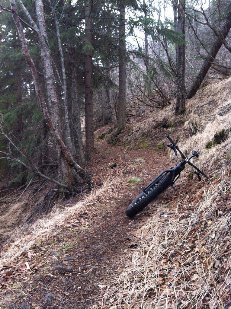 Gull rock trail-img_0779.jpg
