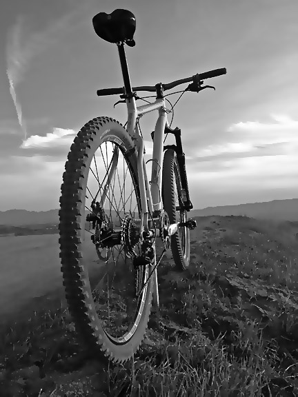 Your Best MTB Pics with the iPhone-img_0782bw.jpg