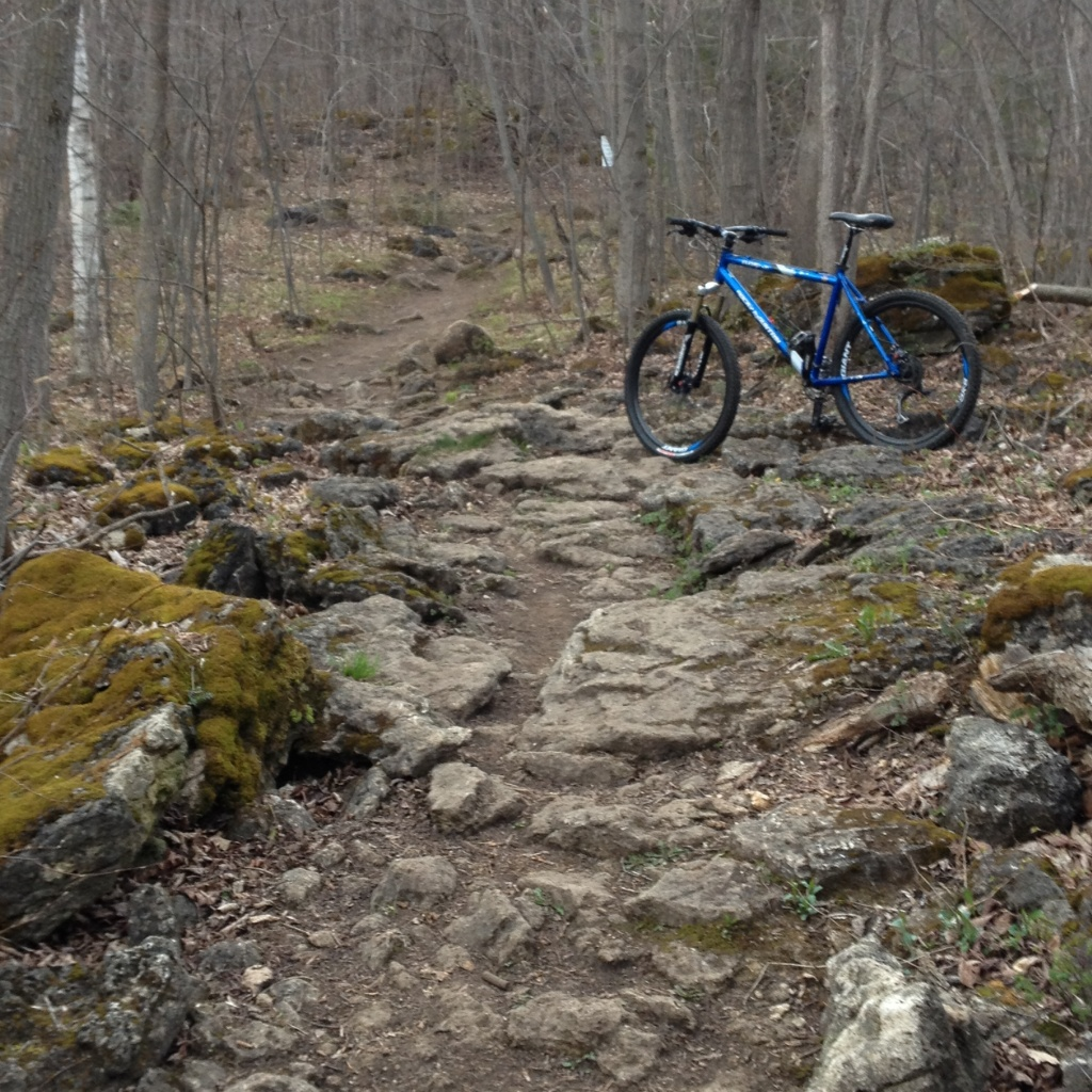 Show us a picture of your 26er MTB that you still use on the trails-img_0784.jpg
