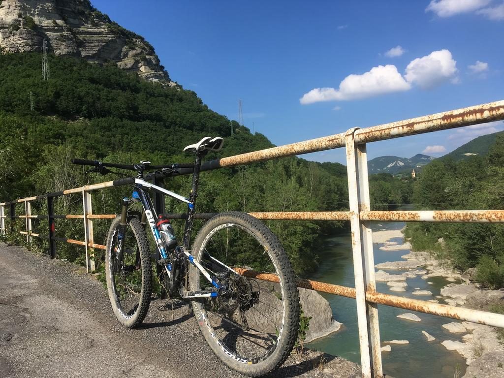 bike +  bridge pics-img_0798.jpg