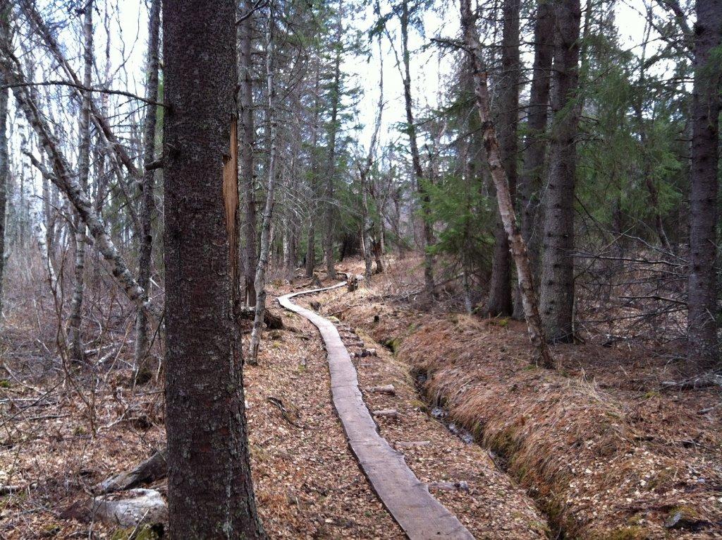 Gull rock trail-img_0799.jpg
