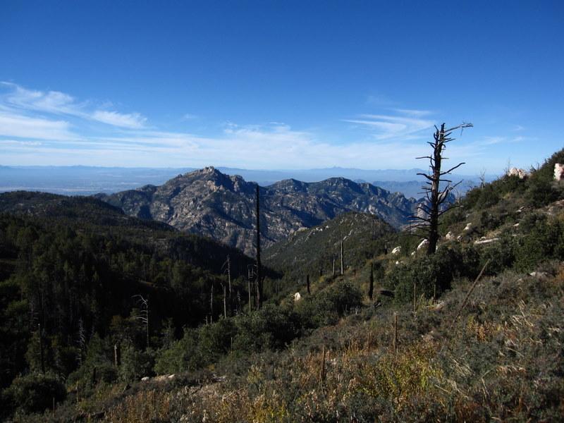 Samaniego Ridge-img_0814.jpg