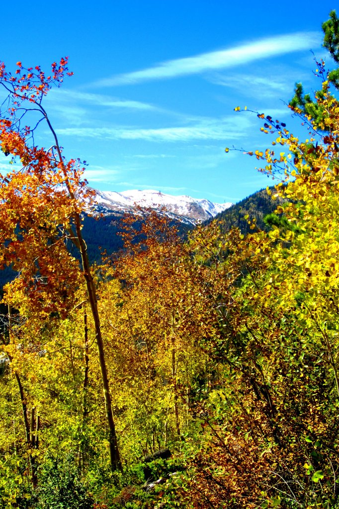Fall is here!-img_0816.jpg