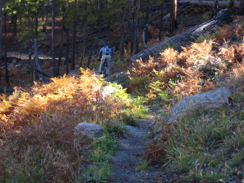 Samaniego Ridge-img_0820.jpg