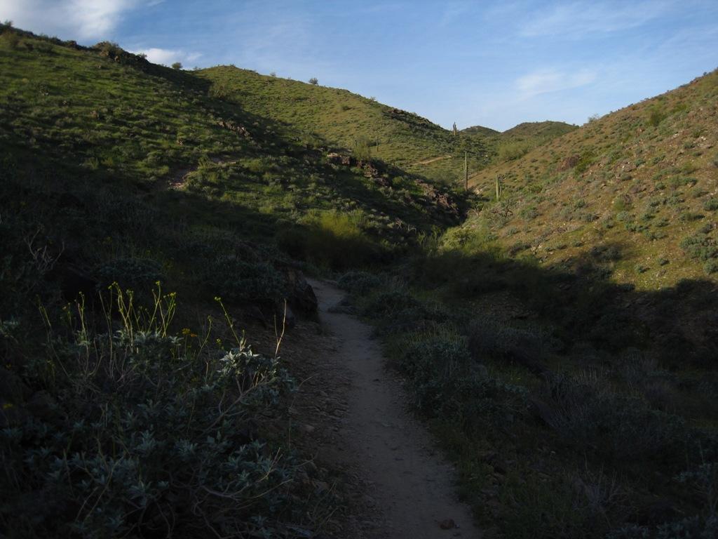 The Desert Rocks-img_0857s.jpg