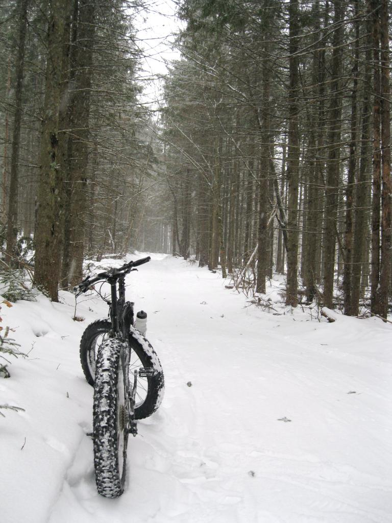 Daily fatbike pic thread-img_0860.jpg