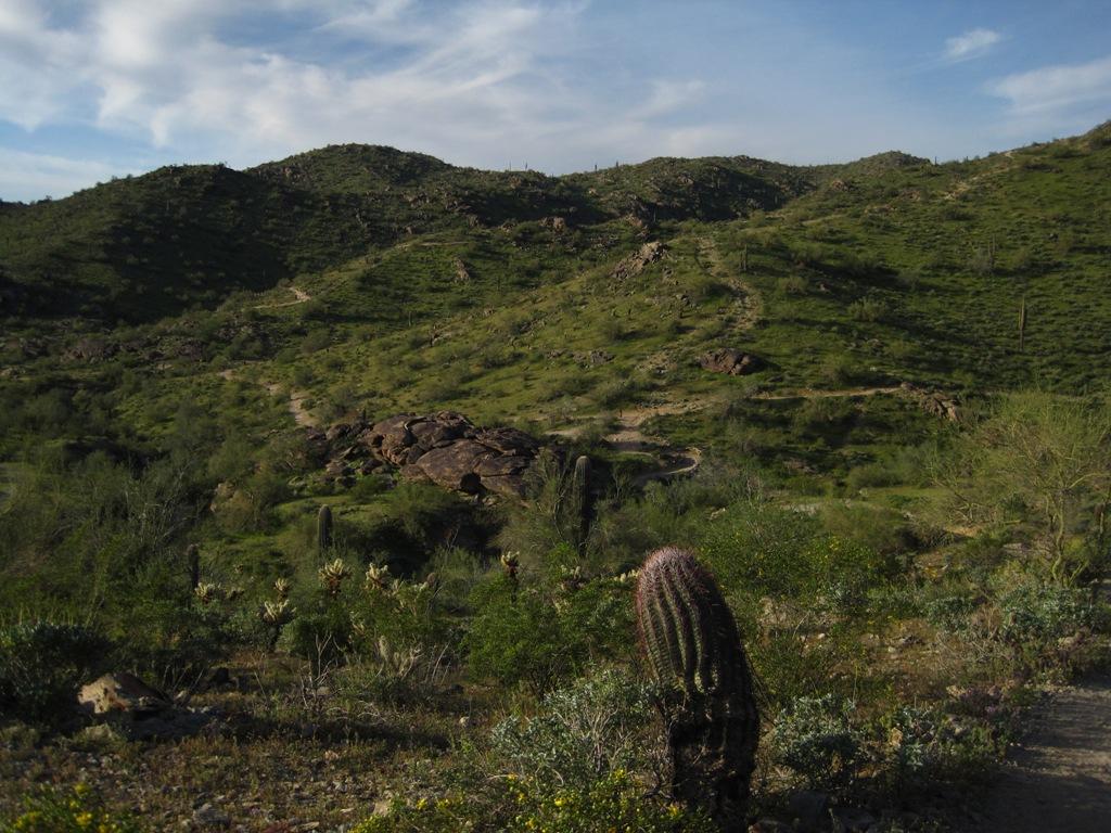 The Desert Rocks-img_0860s.jpg