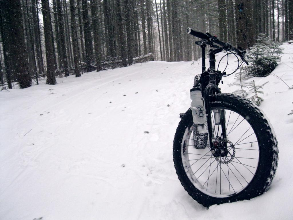 Daily fatbike pic thread-img_0861.jpg