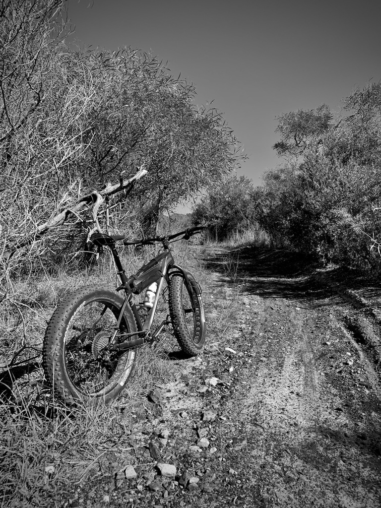 Daily fatbike pic thread-img_0882.jpg