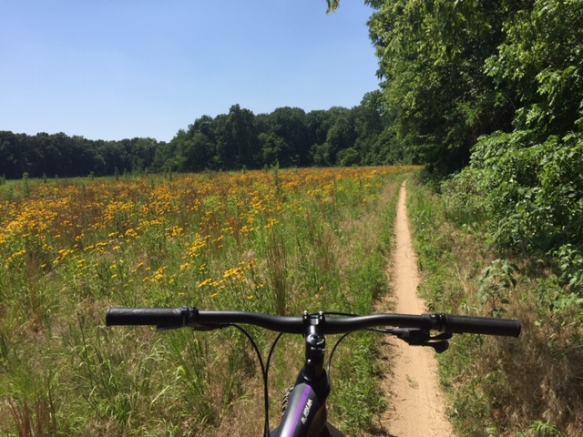 Fat Biking and health-img_0884.jpg