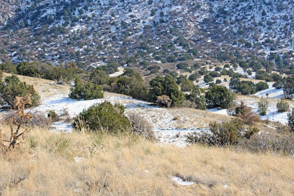 The NM Trail Pix Thread-img_0897.jpg