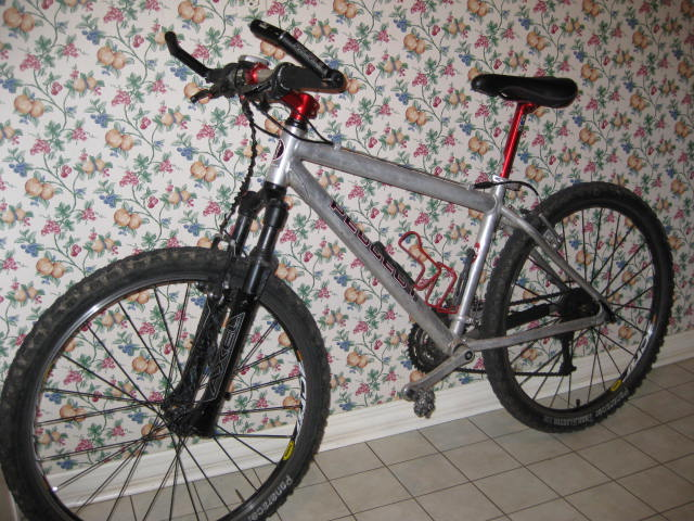 Rebuild My Unkown Peugeot or a new bike?-img_0908.jpg
