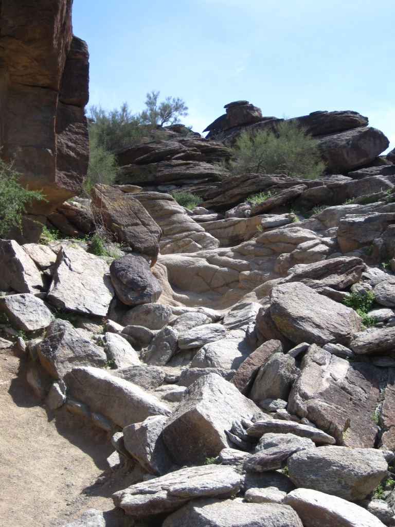 The Desert Rocks-img_0921s.jpg