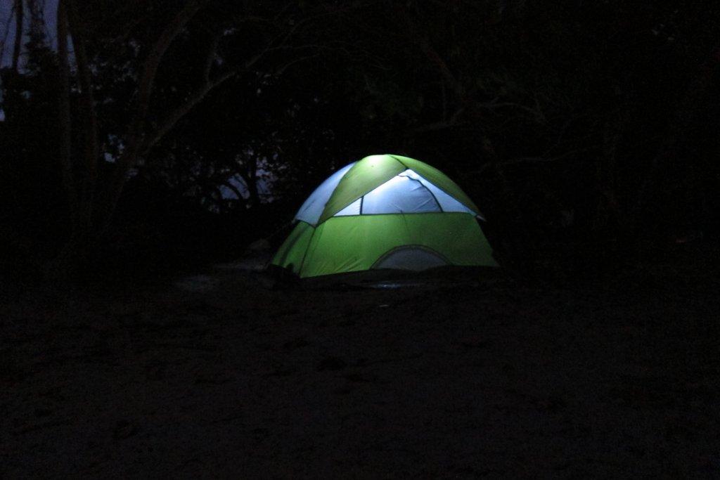 Good Compact Trail Camera - Need Advice-img_0962.jpg