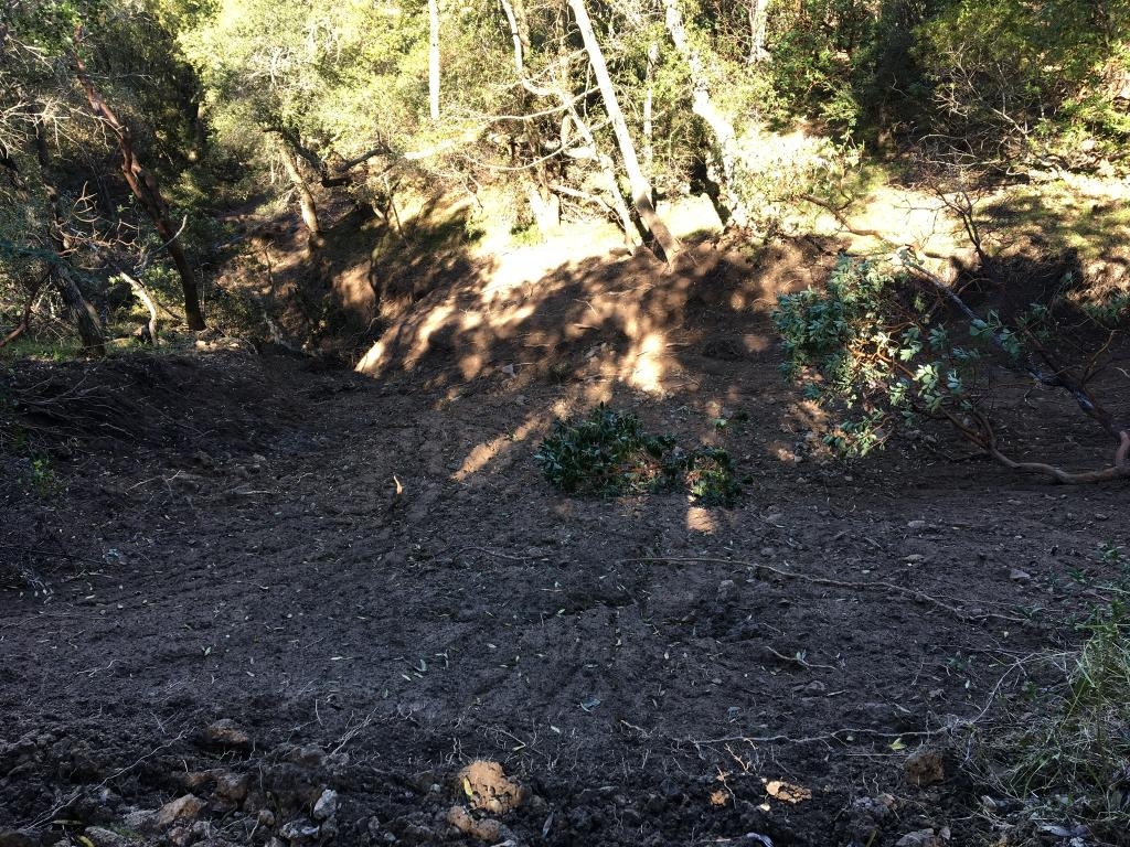 Photo assignment: Trail and land destruction in NorCal.-img_1049.jpg