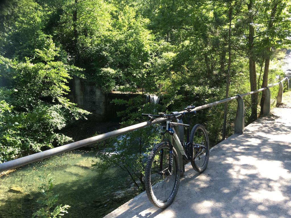bike +  bridge pics-img_1064.jpg