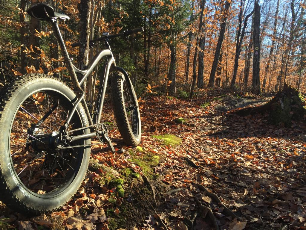 Real World Riding IGH vs Derailleur- Mtbr com