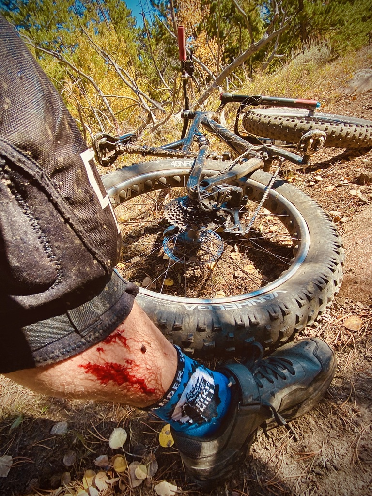 Is your fat bike collecting dust?-img_1129.jpg
