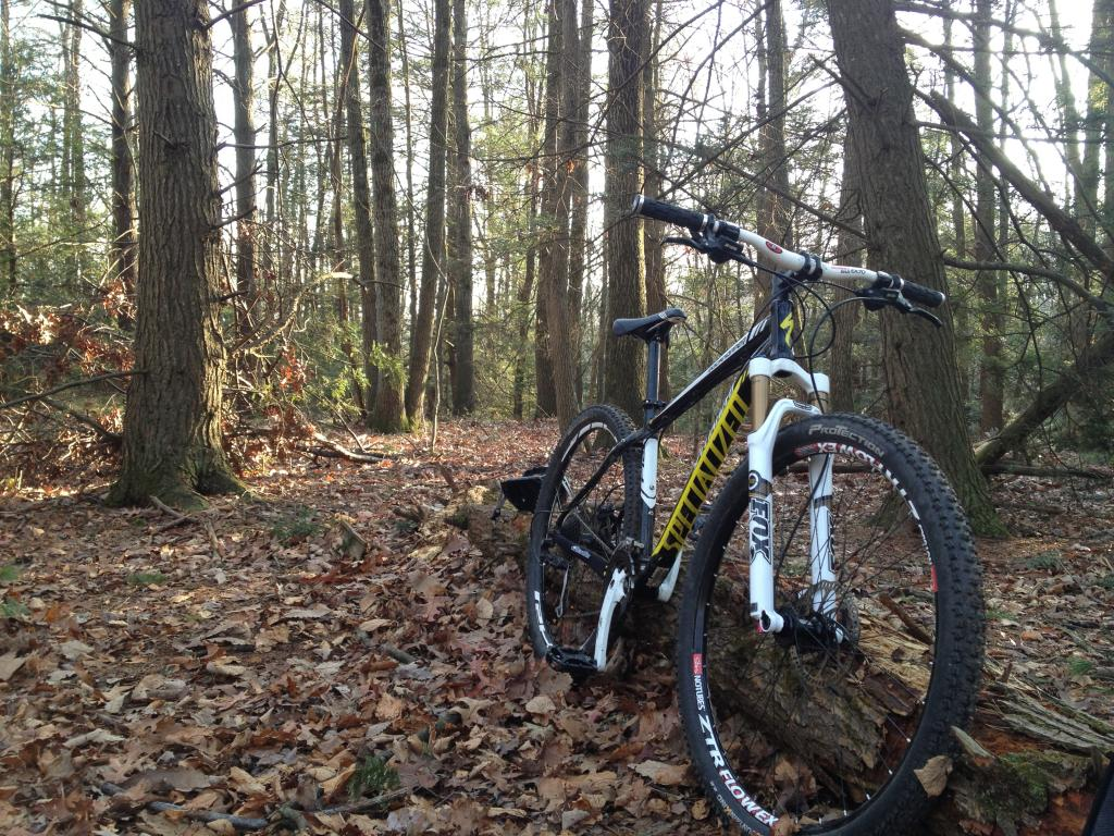 A dedicated thread to show off your Specialized bike-img_1138.jpg