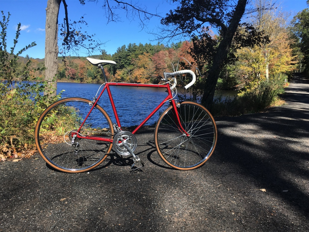 Post Pictures of your Steel Bikes!-img_1178-2-.jpg