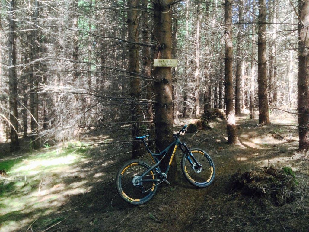 Bike + trail marker pics-img_1197.jpg