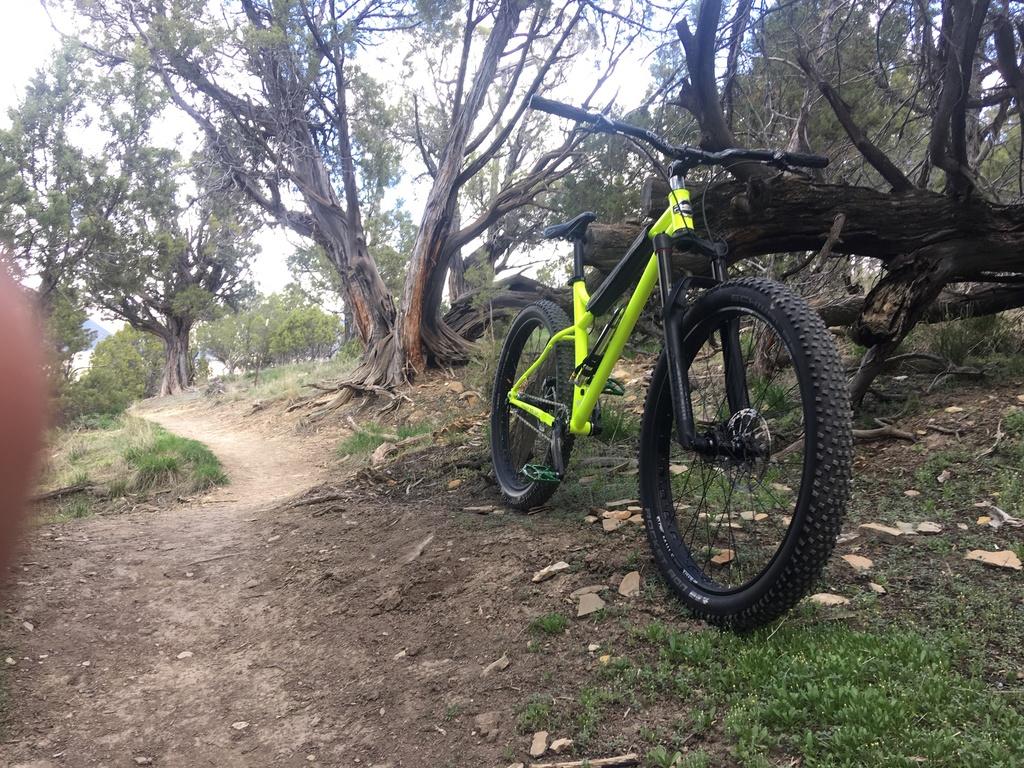 Fat Biking and health-img_1224.jpg