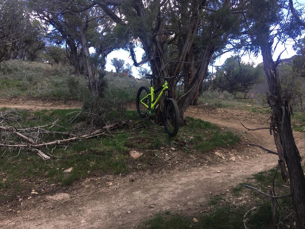 Fat Biking and health-img_1228.jpg