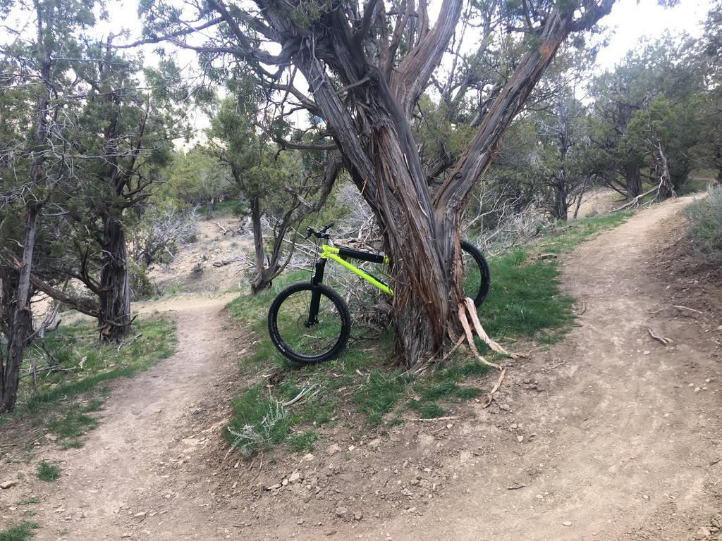 Fat Biking and health-img_1230.jpg