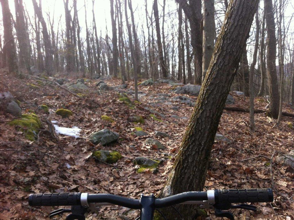 Roaring Creek Conditions 2014/3/16-img_1234-copy.jpg