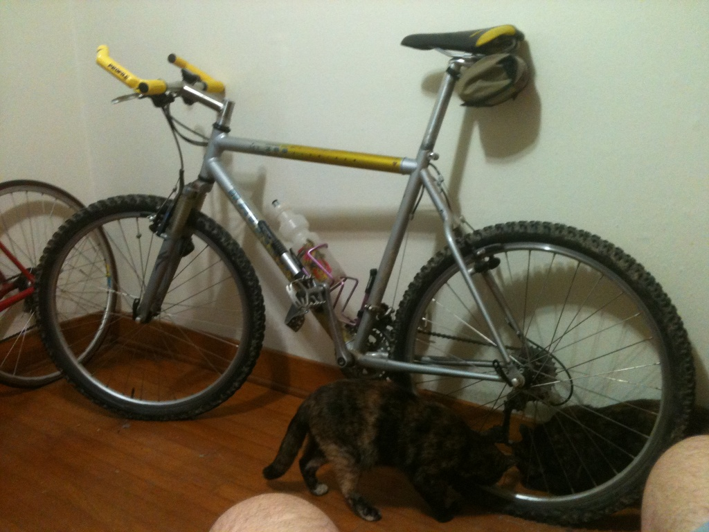 26ers over 10 years old-img_1258.jpg
