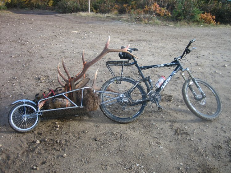 How many of you have Fished/Hunted for your food while Bikepacking?-img_1271res.jpg